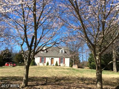 Mount Airy Single Family Home For Sale: 4467 Baltimore National Pike