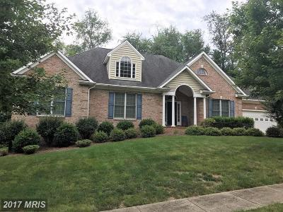Culpeper Single Family Home For Sale: 537 Tara Court