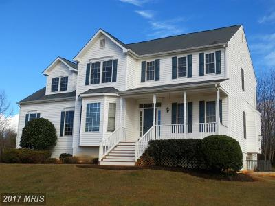 Culpeper Single Family Home For Sale: 11413 Nether Court