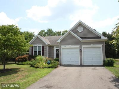 Culpeper Single Family Home For Sale: 460 Kearns Drive