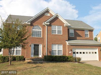 Culpeper Single Family Home For Sale: 1033 Virginia Avenue