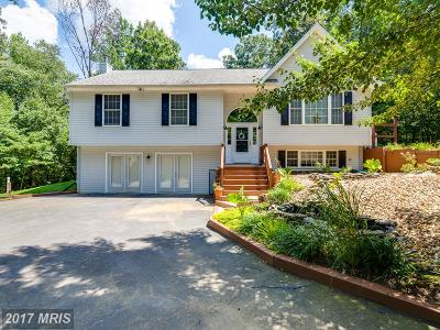 Culpeper Single Family Home For Sale: 11243 Holland Court