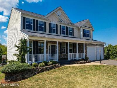 Culpeper Single Family Home For Sale: 13209 Kerr Place