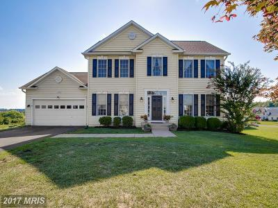 Culpeper Single Family Home For Sale: 14310 Hall Court