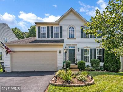 Culpeper Single Family Home For Sale: 12322 Osprey Lane