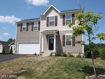 Culpeper Single Family Home For Sale: 18130 Scenic Creek Lane