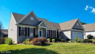 Culpeper Single Family Home For Sale: 1160 Virginia Avenue