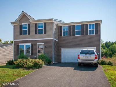 Culpeper Single Family Home For Sale: 18129 Scenic Creek Lane
