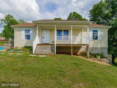 Culpeper Single Family Home For Sale: 12199 Horseshoe Drive