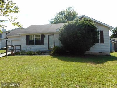 Culpeper Single Family Home For Sale: 1617 Harrier Lane