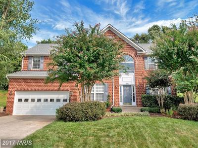 Culpeper Single Family Home For Sale: 1073 Virginia Avenue
