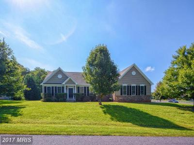 Culpeper Single Family Home For Sale: 1101 Virginia Avenue
