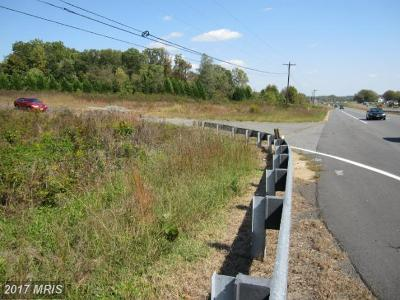 Residential Lots & Land For Sale: 10029 James Monroe Highway