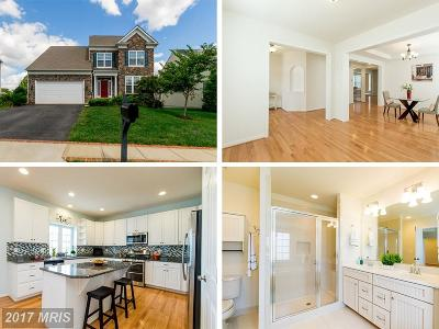 Culpeper Single Family Home For Sale: 148 Standpipe Road