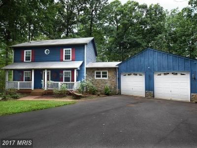 Culpeper Single Family Home For Sale: 11016 Mount Zion Church Road