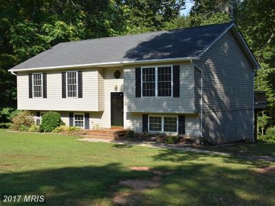 Culpeper Single Family Home For Sale: 13256 Scotts Mill