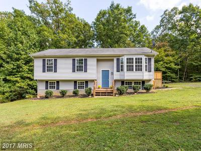 Culpeper Single Family Home For Sale: 21339 Jennings Road
