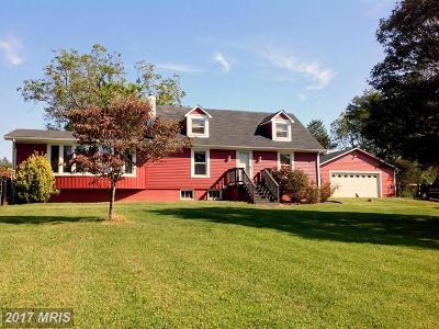 Culpeper Single Family Home For Sale: 7395 Lakota Road