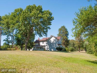 Culpeper Single Family Home For Sale: 318 Lewis Street