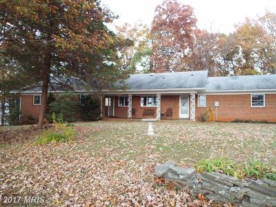 Culpeper Single Family Home For Sale: 16014 Braggs Corner Road