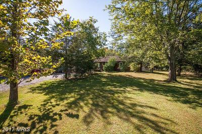 Culpeper Single Family Home For Sale: 16328 Brandy
