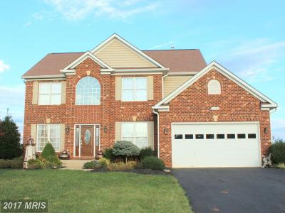Culpeper Single Family Home For Sale: 14309 South Hall Court