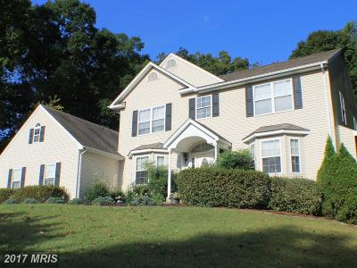 Culpeper Single Family Home For Sale: 13468 Montavista Lane