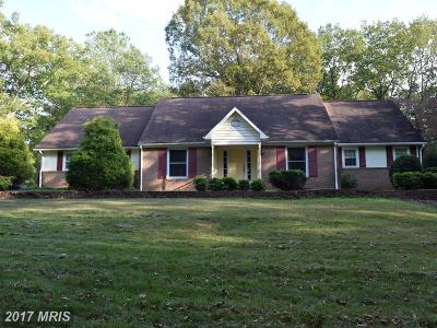 Culpeper Single Family Home For Sale: 16361 Lake Front Court