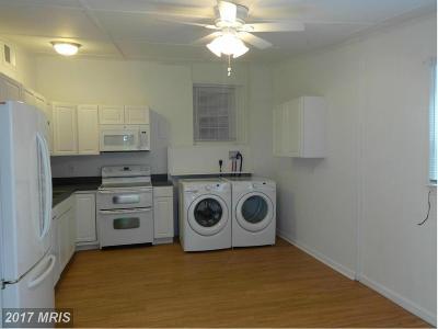 Culpeper Rental For Rent: 114 Edmondson Street W #B