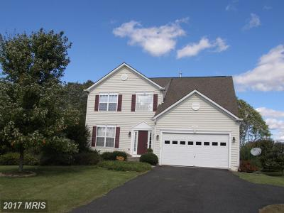 Culpeper Single Family Home For Sale: 14404 Lee Hall Court