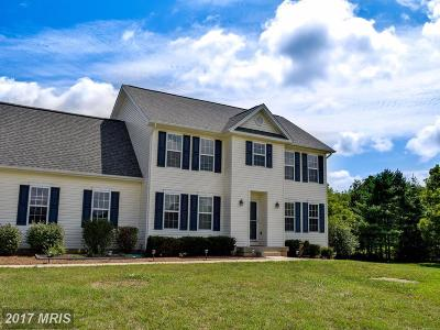 Culpeper Single Family Home For Sale: 16253 Glenhollow Court