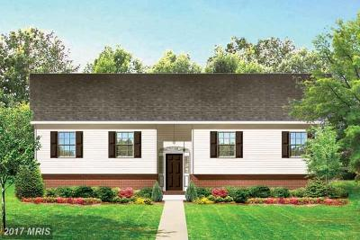 Culpeper Single Family Home For Sale: Wayland
