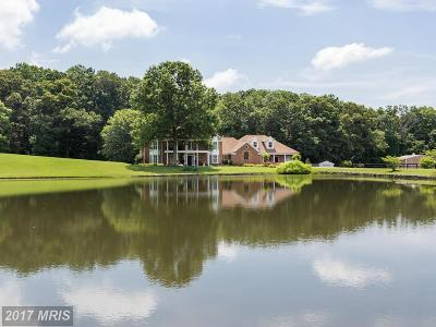 Culpeper Single Family Home For Sale: 19427 Rolling Hills Drive