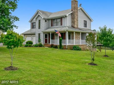 Culpeper Single Family Home For Sale: 9676 Paddock Lane