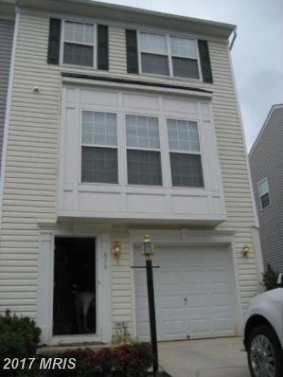 Culpeper Rental For Rent: 876 Persimmon Place