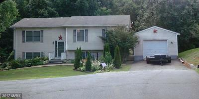 Culpeper Single Family Home For Sale: 19063 Allens Lane