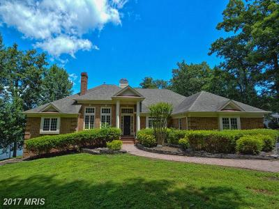 Culpeper Single Family Home For Sale: 8151 Lake Rillhurst Road