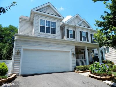 Culpeper Single Family Home For Sale: 649 Hunters Road