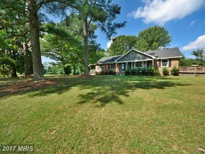 Beaverdam, Bowling Green, Doswell, Fredericksburg, Hanover, Ladysmith, Milford, Port Royal, Rappahannock Academy, Ruther Glen, Woodford Single Family Home For Sale: 16078 Dawn Boulevard