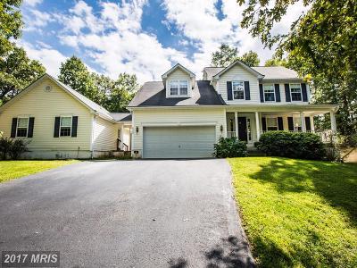 Fredericksburg Single Family Home For Sale: 6909 Tanglewood Drive