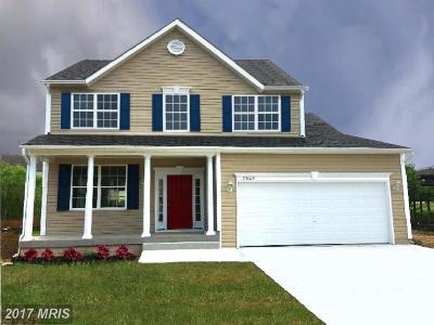 Caroline Single Family Home For Sale: 23131 Travers Street