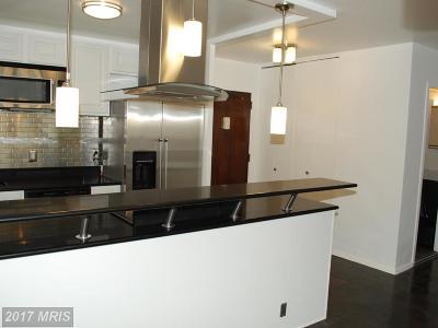 Rental For Rent: 1435 4th Street SW #B415