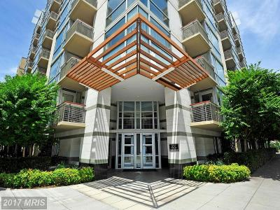 Rental For Rent: 1300 13th Street NW #106