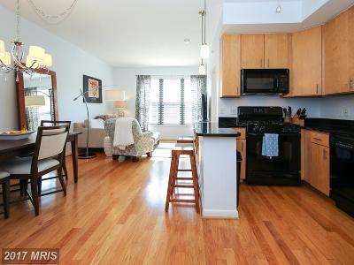 Washington Condo For Sale: 1001 L Street NW #807