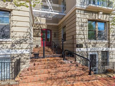 Georgetown Condo For Sale: 1613 30th Street NW #1S