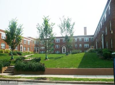 Rental For Rent: 207 16th Street NE #6