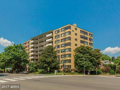 Cleveland Park Condo For Sale: 3601 Wisconsin Avenue NW #708