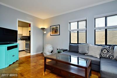 Rental For Rent: 1280 21st Street NW #906