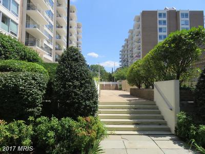 Rental For Rent: 1435 4th Street SW #B211