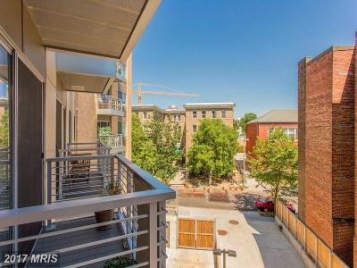 Mount Pleasant Condo For Sale: 2550 17th Street NW #303